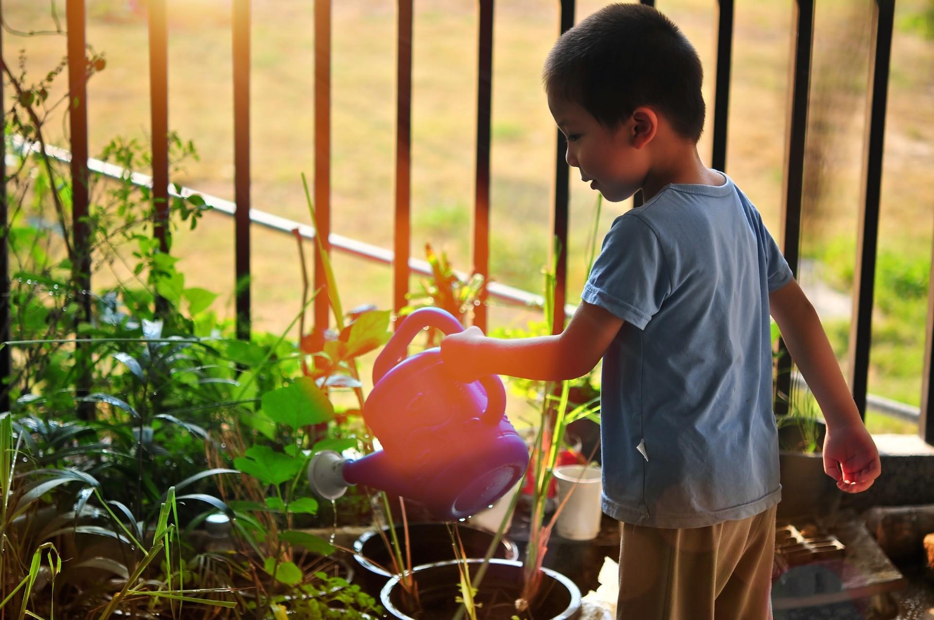 Como acercar a los niños a los cuidados del jardín y las plantas.