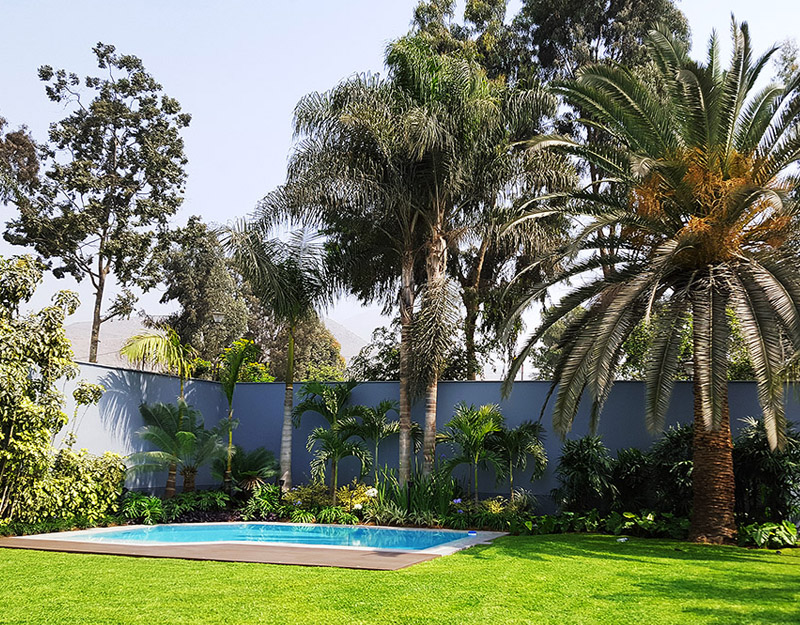 proyecto Rinconada Baja